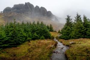 Camino montañas